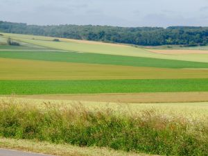 The countryside outside the Australian War Memorial